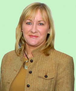 sf cllr imelda munster photo